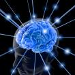 telomery_mozg