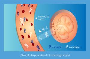 test na ojcostwo w ciąży, testy na o ojcostwo w ciąży, test DNA na ojcostwo w ciąży, testy DNA na ojcostwo w ciąży, badanie DNA na ojcostwo w ciąży, badania DNA na ojcostwo w ciąży, badanie na ojcostwo w ciąży, badania na ojcostwo w ciąży, sprawdzenie ojcostwa w ciąży, test na ojcostwo przed porodem, testy na ojcostwo przed porodem, test na ojcostwo w czasie ciąży, testy na ojcostwo w czasie ciąży, test na ojcostwo w ciąży cena, testy na ojcostwo w ciąży cena, ile kosztuje test na ojcostwo w ciąży, ustalenie ojcostwa w ciąży, badanie ojcostwa w ciąży, badania ojcostwa w ciąży, test ojcostwa w ciąży, testy ojcostwa w ciąży